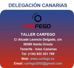 Pastiila delegado Carfego